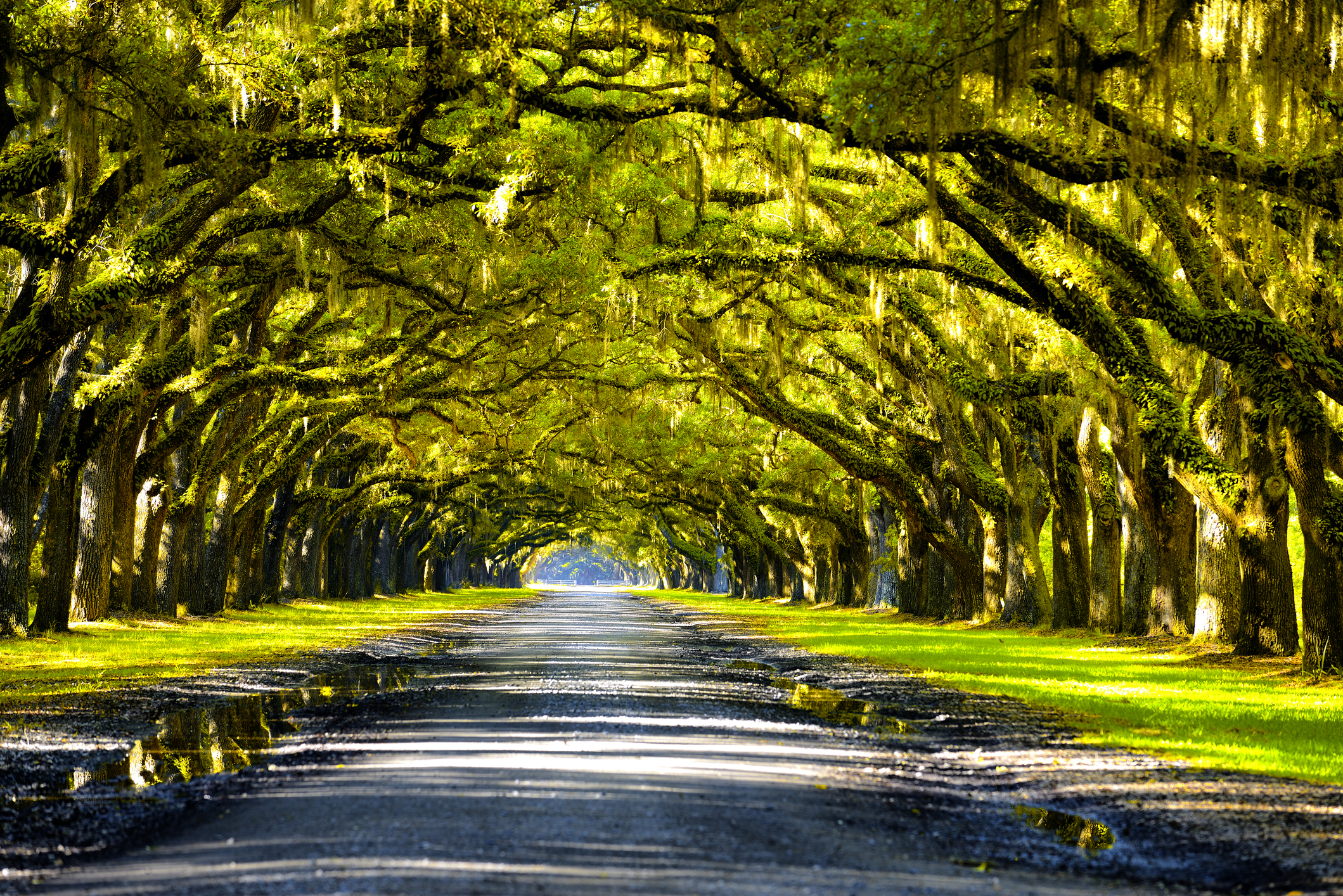 New Orleans' Most Famous Plantation Tours (Updated April 2021)